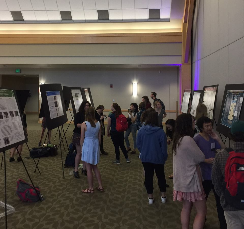 Anthropology Students Present their Work at the UVM Student Research Conference