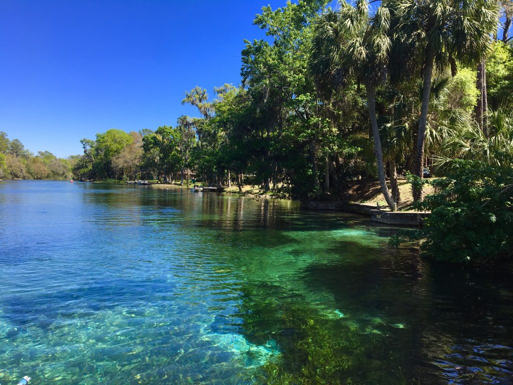 Spring Break: Dunnellon, Florida
