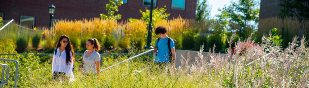 University of Vermont Career Center Blog