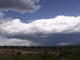 NM_Desert2.jpg