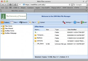Screenshot of the Webfiles folder listing