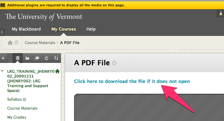 Opening an embedded PDF in Firefox - click on the link at the top.