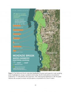 McKenzie Brook map created by Middlebury College ENVS students: Emma Homans, Hilary Niles, Ben Harris and Morgan Raith.