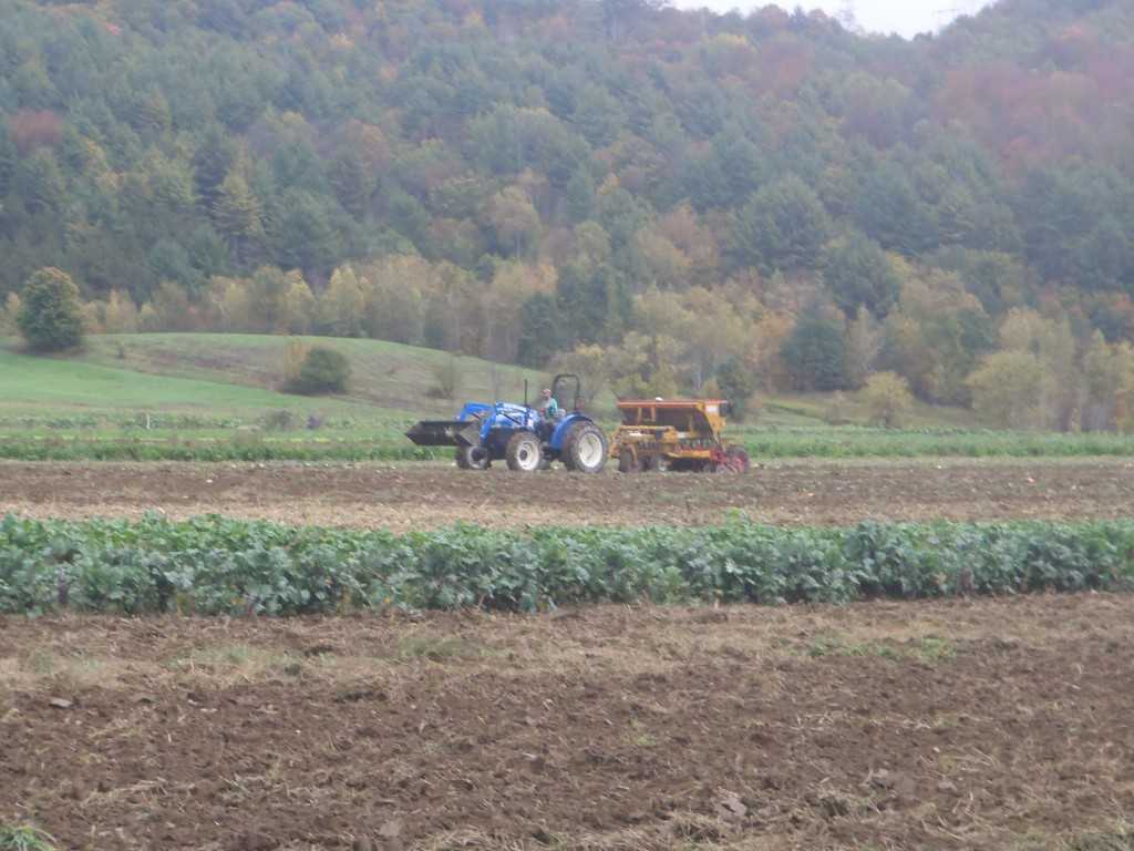 Drilling Cover Crops into Vegetable Fields