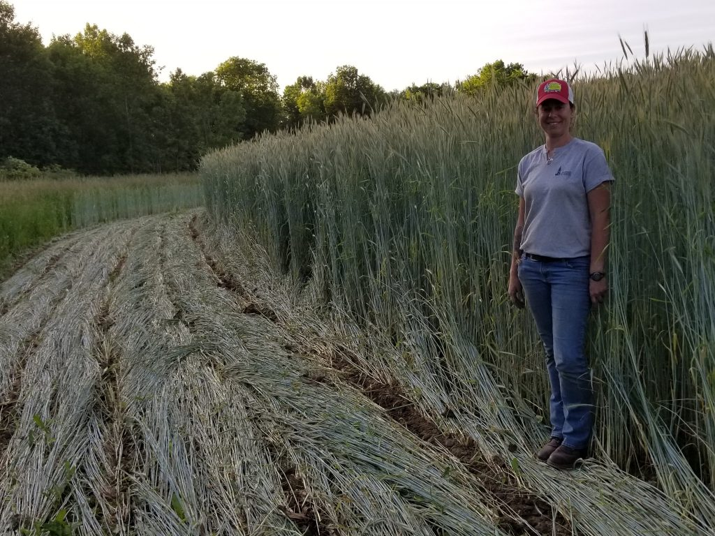 FOCUS ON AGRICULTURE IN THE CHAMPLAIN VALLEY AND BEYOND