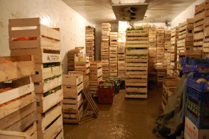veg in storage 3