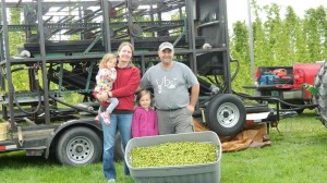 Kathleen, Krista, Marie and Jason Johnson of Aroostook Hops in Westfield, ME with their first bin of cones off the machine.
