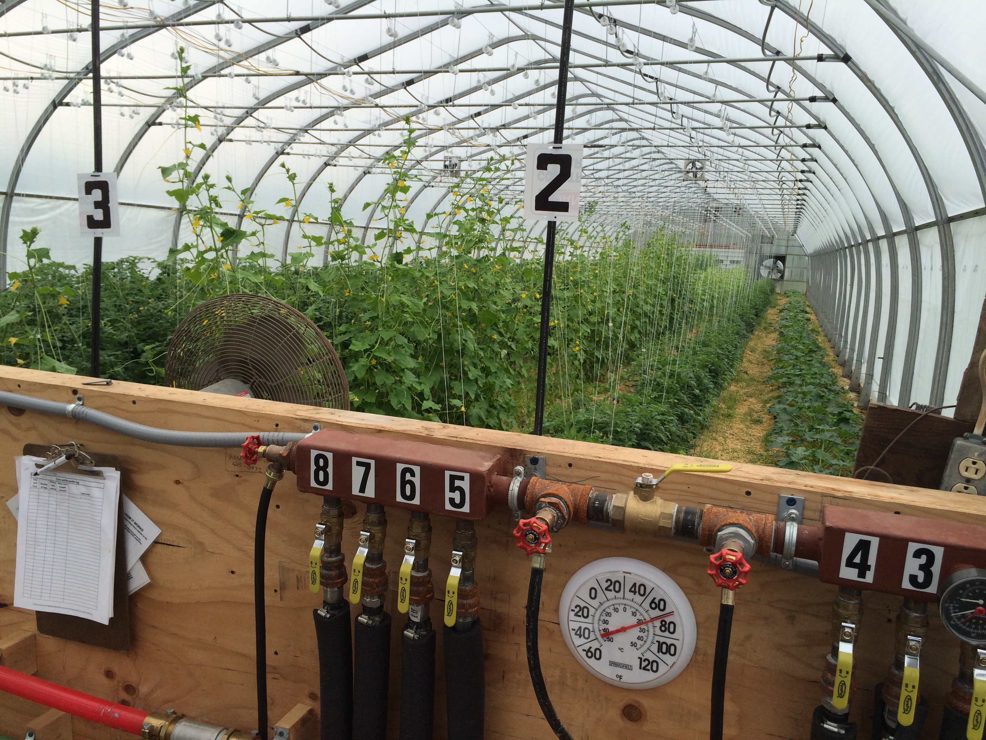 Update On Heating Greenhouses With Biomass Uvm Extension
