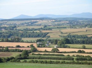 The Golden Vale from Galty Mor