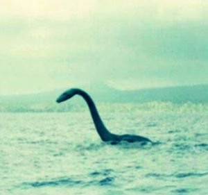 NSSE more than your average lake monster