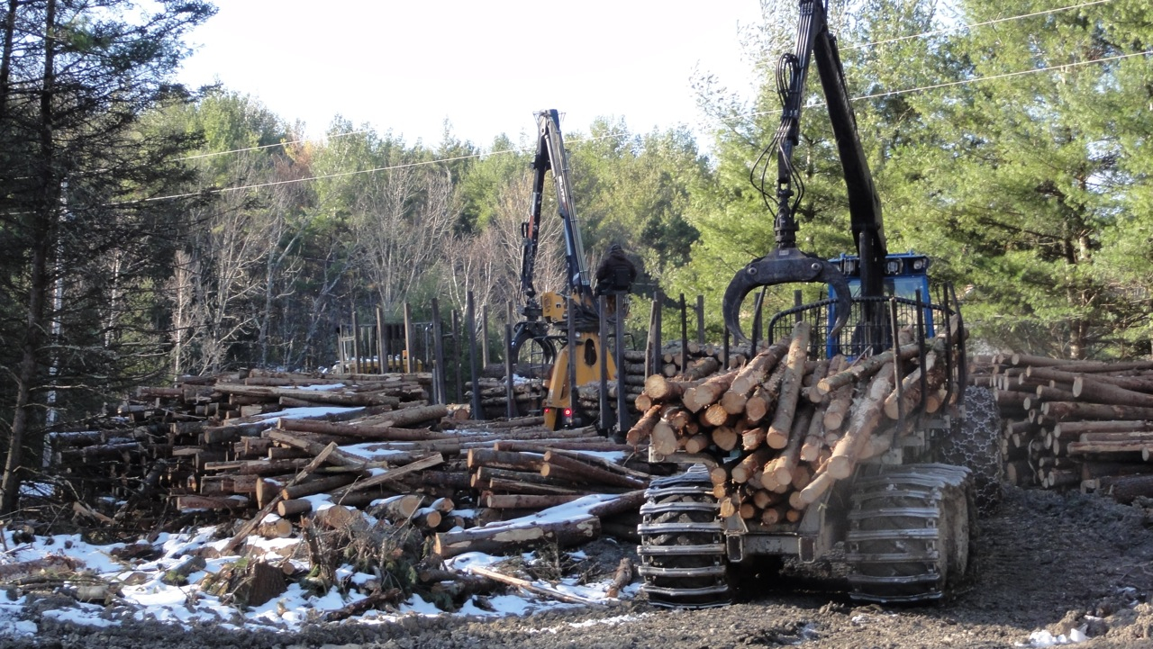 Business Skills for Logging Professionals: Workshops November 8th and 9th