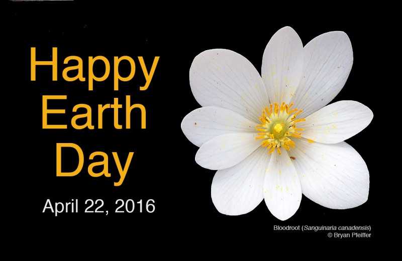 Earth Day Greetings from UVM's Field Naturalists and Ecological Planners