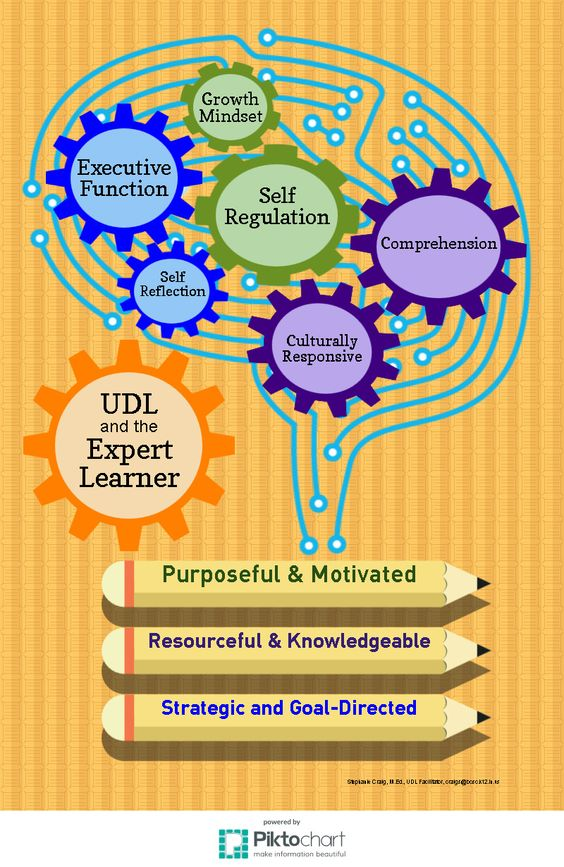 UDL and Expert Learners