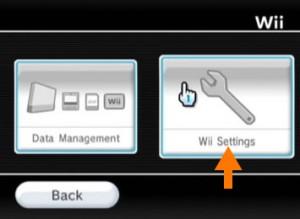 Wii(2)