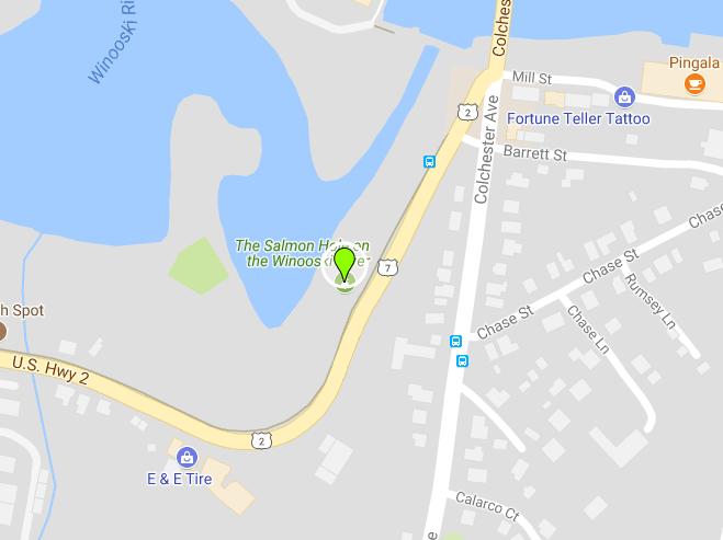 Salmon Hole Location
