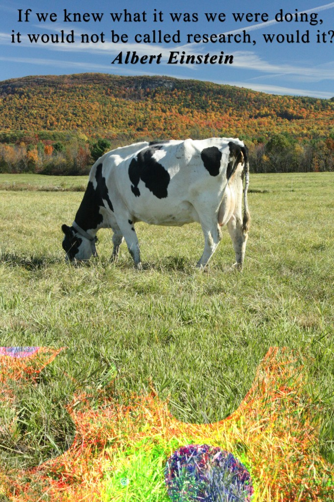 Why worry about FMD here in Vermont?