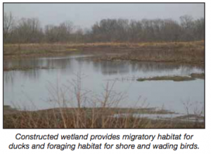A wetland that he has placed on the property