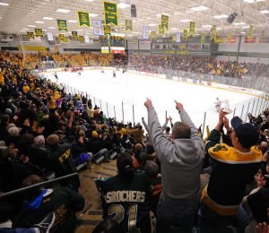 Hockey at Cheel Arena