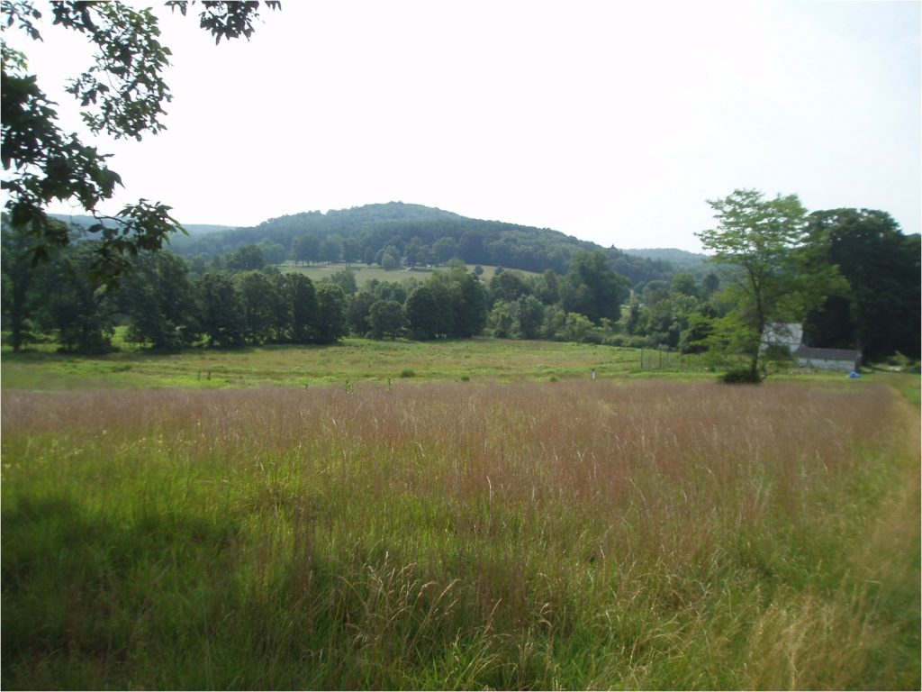 Pound Ridge, New York: Natural Capital