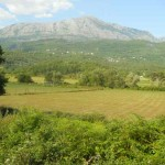 Montenegrin countryside