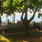 Public park next to Bosporus