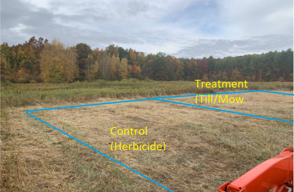 Photo of one of Stever Bartlett's research plots with the control (herbicide) and the treatment (till/mow) plots identified.