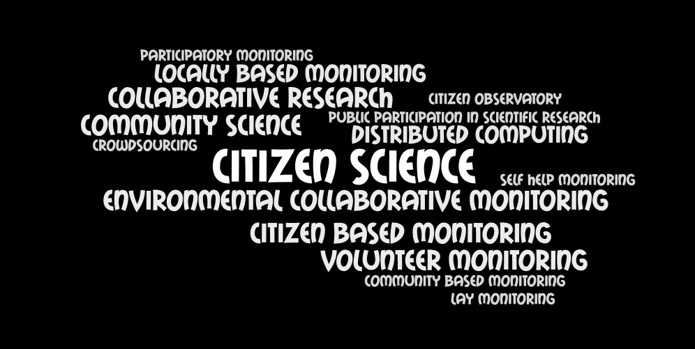 Image that shows many terms for public participation in scientific research