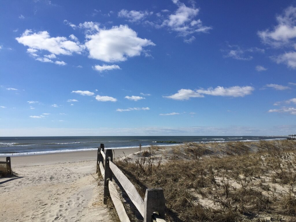 Phenology of Ocean City, New Jersey : Melissa's Place-based