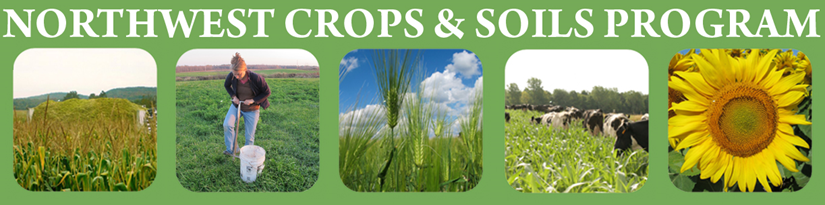 Coffee Break for Cover Crops Webinar Series