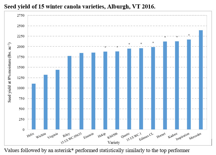 Performance of Winter Canola Varieties