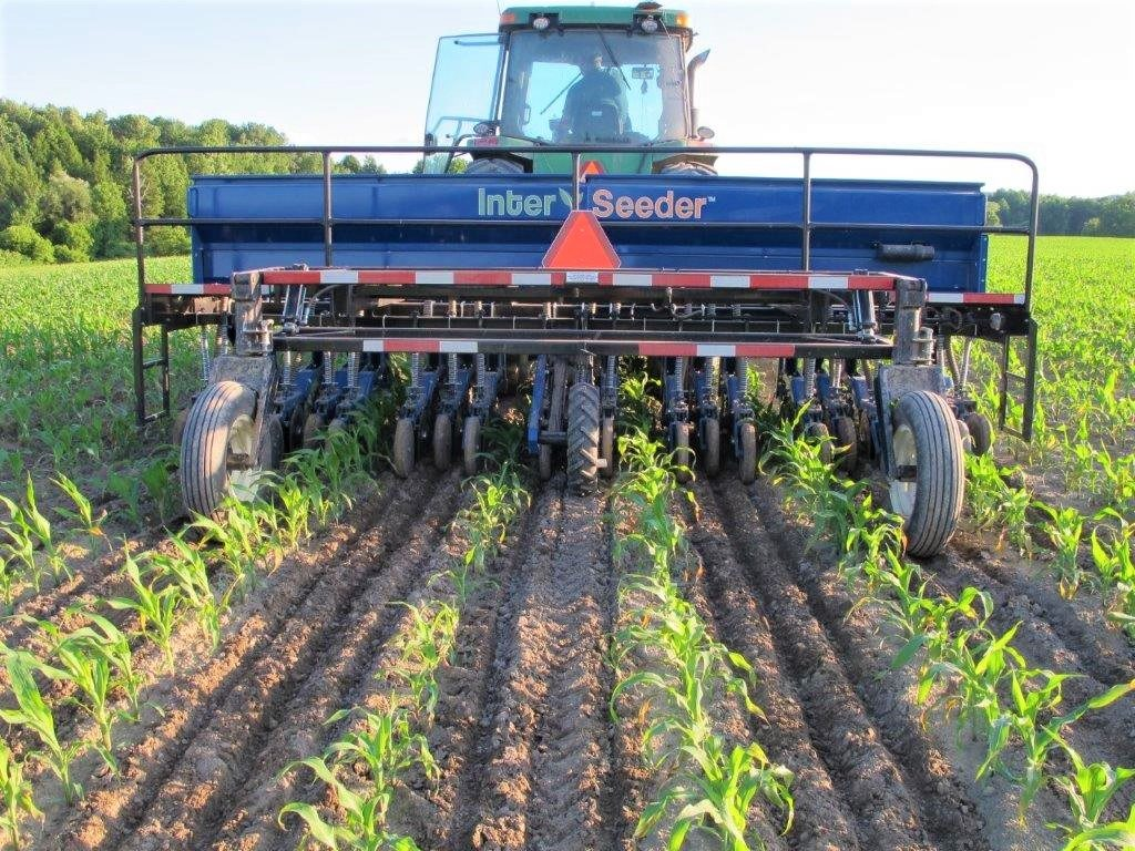 Interested in Trying Cover Crop Interseeding?