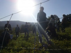 2012 pasture walk and on-farm workshop in the Mad River Valley.