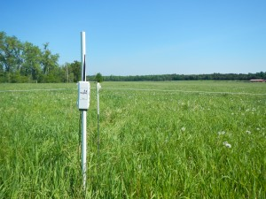 Installed soil moisture sensor (front view)