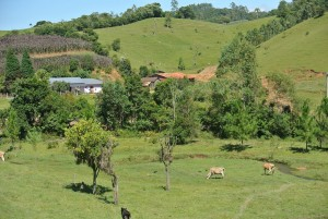 Santa Catarina mountainous farmscape
