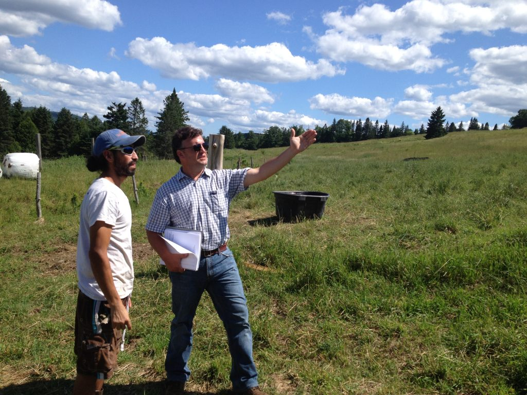 Pasture Program Establishes Long-Term Research at Philo Ridge Farm