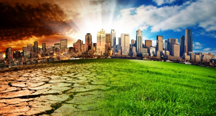 I Spent 5 Months Thinking About Climate Change In A New Way, And Why Your Company Should Do The Same