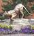 UVM CAT statue
