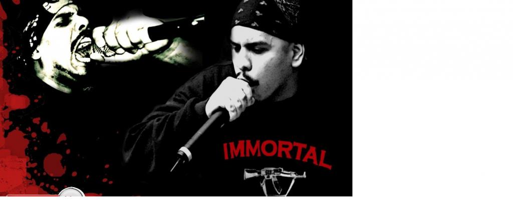 The Political Hip Hop Sub-genre
