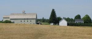 Olivia's Croutons farm