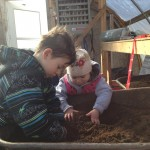 kids potting soil