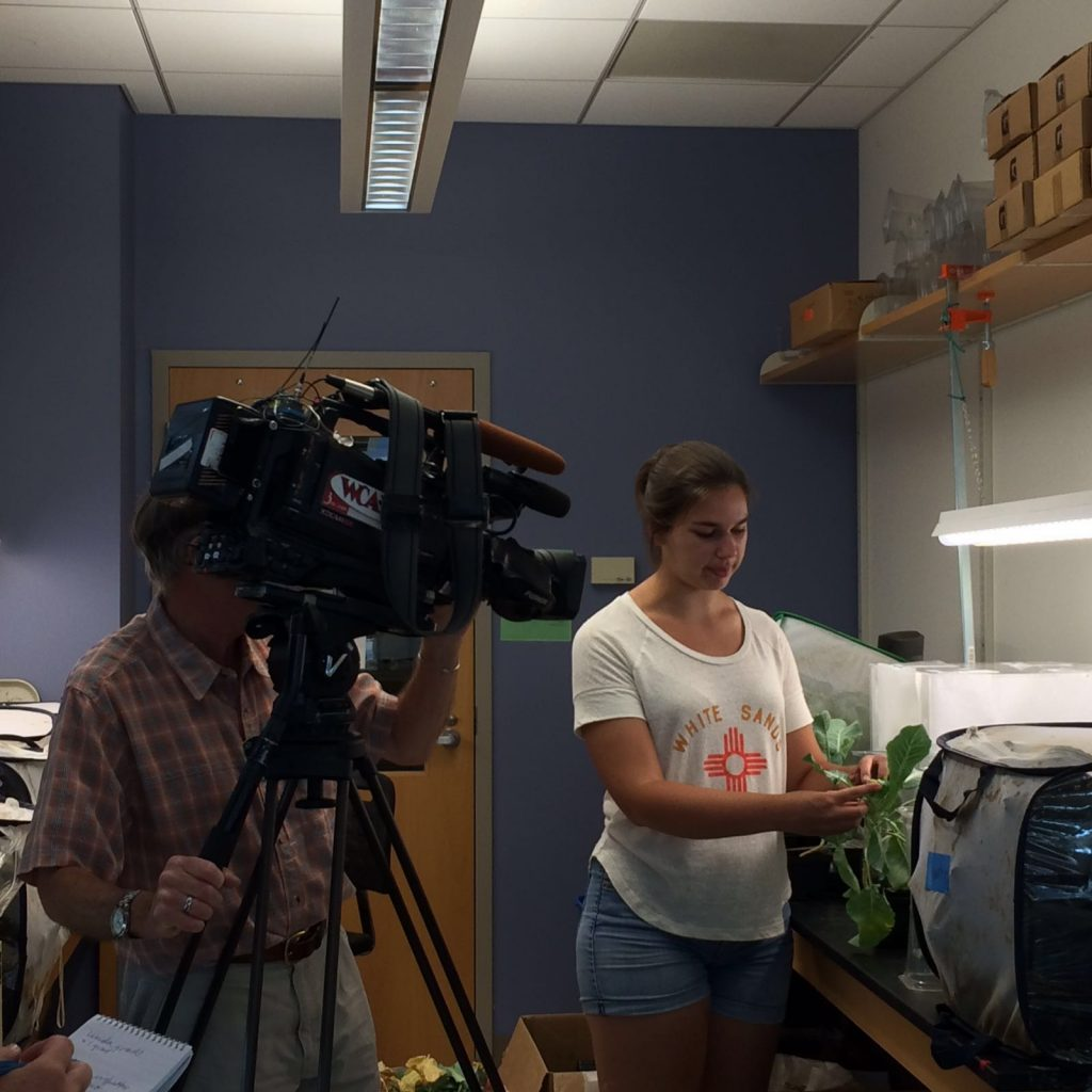 IAEL lab on the news